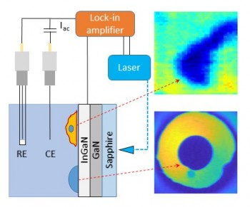 AC photocurrent imaging at an epitaxial layer of InGaN/GaN on sapphire was shown to be sensitive to the impedance of a polymer dot and the negative surface charge of an isolated cell. AC photocurrents were excited with a focused, intensity-modulated 405 nm laser and measured with a lock-in amplifier. Images were obtained by measuring the photocurrent while moving the electrochemical cell with respect to the laser beam using an XYZ positioning system.