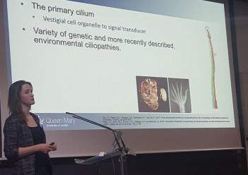 Megan presenting at the International Conference on Cilia, Flagella and Centrosomes in Paris