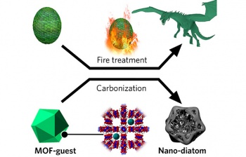 The transformation of the MOF into a nano-diatom is much like the metamorphosis of a dragon egg into a fire-born dragon when given fire treatment in Game of Thrones